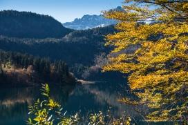 Alpsee bei Schwangau, autumn 2014 - Nikon D810, 80mm (80-400 ƒ/4.5-5.6) 1/125 ƒ/8 ISO 64
