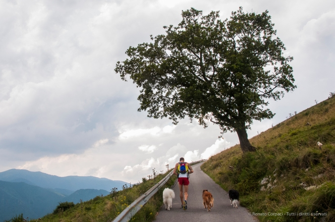 Monte Cornizzolo - Nikon D300s, 16mm (16-85mm f/3.4-5.6), 1/80sec, ƒ/16 ISO 800