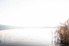 "Laghi di Annone. Nikon D810, 20 mm (20.0 mm ƒ/1.8) 1/15"" ƒ/6.3 ISO 800"