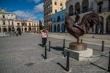 "The ""Rooster Rider"", a sculpture of Roberto Fabelo surprises the tourists in Plaza Vieja. Nikon D810, 70 mm (24-120.0 ƒ/4) 1/100"" ƒ/4 ISO 3200."