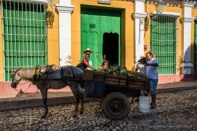 "Trinidad. Nikon D810, 31 mm (24-120.0 ƒ/4) 1/320"" ƒ/13 ISO 200"