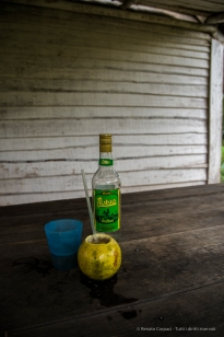 "Sugarcane juice, Ron and pineapple just out of the fruit. Nikon D810, 24 mm (24-120.0 ƒ/4) 1/100"" ƒ/5.0 ISO 400"