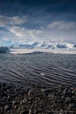 The Jökulsárlón lagoon appears fairly free of ice as it approaches the see. D810 24 mm (24.0 mm ƒ/1.4) 1/60 ƒ/11 ISO 64