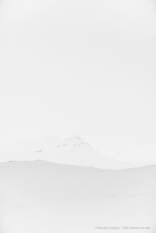 «White On White 1.» D810, 82 mm (24-120.0 ƒ/4) 1/160″ ƒ/4 ISO 64