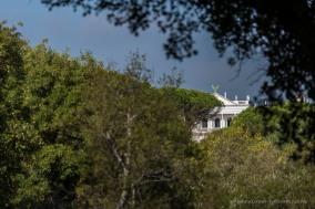 """El Rocío, Los Cabezudos, Palacio del Acebron, Parco di Doñana. Nikon D750, 210 mm (80-400 mm ƒ/4.5-5.6) 1/800"""" ƒ/5.3 ISO 100"""