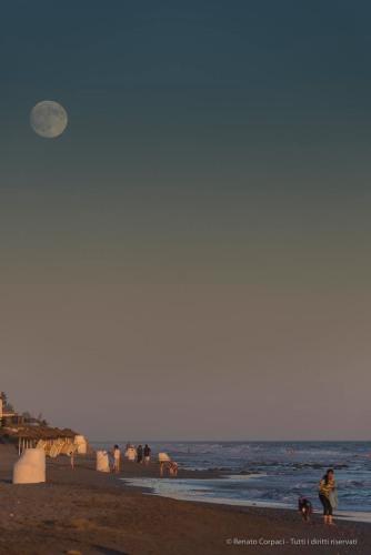"""Marbella, Andalusia. Nikki Beach. Nikon D750, 250 mm (80-400 ƒ/4.5-5.6) 1/1000"""" ƒ/5.6 ISO 400"""